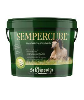 Sempercube 3KG ST HIPPOLYT