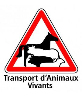 PANNEAU TRANSPORT D ANIMAUX VIVANT 20 X 20CM